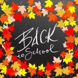 Back to school. Chalk lettering on blackboard surface. Typography poster with autumn leaves. Vector illustration. Back to school. Chalk lettering on blackboard Stock Images