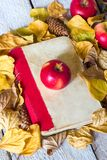 Back to school concept. Autumn leaves with old book and apple on wooden background. Stock Images