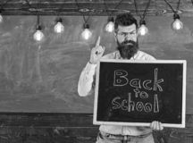Back to school concept. Man with beard and mustache on strict face warns students, chalkboard on background. Teacher in. Eyeglasses holds blackboard with royalty free stock image