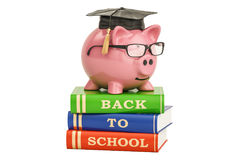 Back to school concept. Piggy bank on books, 3D rendering. Back to school concept. Piggy bank on books, 3D Stock Image
