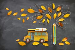 Back to school concept. Top view image of school bus and pencils next to tree sketch with autumn dry leaves over classroom blackbo. Ard background royalty free illustration
