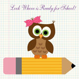 Back to school decorations. Cute character of little owl sitting on a pencil against copybook squared paper background as a symbol of young and curious first royalty free illustration