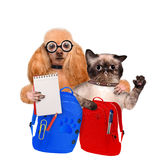 Back to School. Stock Images