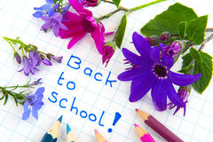 Back to school with flowers Stock Image