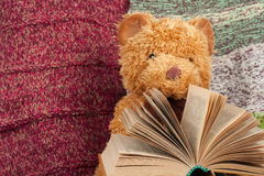 Back to school. Knitted blanket. Teddy bear reading a Open hardback book. Copy space for text. Royalty Free Stock Photography