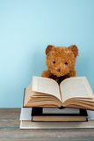 Back to school. Knitted blanket. Teddy bear reading a Open hardback book. Copy space for text. Royalty Free Stock Photos