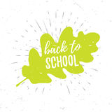 Back to school lettering typography on green oak leaf with burst on a old textured background. Hand drawn trendy design Stock Image