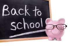 Back to school message on blackboard, piggy bank, isolated on white background Stock Images