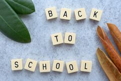 Back to school Message with game tiles on grey stone background. Back to school text with game tiles. Summer green leaves and faded fall leaves stock photography