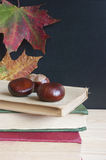 Back to school, old books, blackboard, autumn. Stock Photography