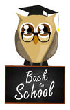 Back to school owl Royalty Free Stock Images