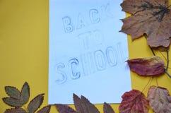 Back to School poster of September autumn leaves foliage. falling maple, oak, rowan or chestnut leaf on school chalkboard or black stock photo