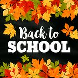 Back to School vector autumn leaf foliage poster. Back to School poster of September autumn leaves foliage. Vector falling maple, oak, rowan or chestnut leaf on Stock Image