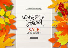 Back to school sale background with leaves on wooden boards.Vector illustration. Stock Image