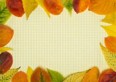 Back to school.School notebook and frame of autumn leaves Royalty Free Stock Image