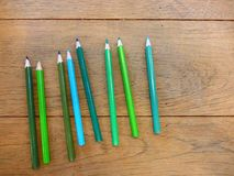 Back to school with the set of the green color pencils. Set of the green color pencil on the wood table with ligthing Stock Photos