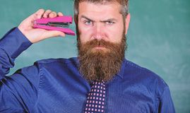 Back to school and studying. Teaching memorization techniques. Teacher bearded man with pink stapler chalkboard. Background. Pin it on mind. Hipster teacher stock photo