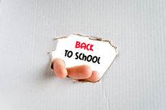 Back to school text concept Royalty Free Stock Images