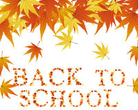Back to school theme. Background. Vector illustration Stock Photography