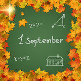 Back to school vector background. Back to school, education, 1 september autumn vector background Stock Photography
