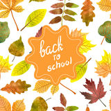 Back to school vector background. Seamless autumn pattern with watercolor leaves. Fall wallpaper Stock Images