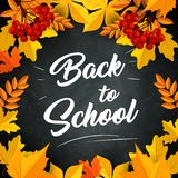 Back to School vector leaf on chalkboard poster. Back to School poster of autumn September leaves foliage of maple, rowan or oak and chestnut yellow leaf on Royalty Free Stock Photo