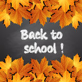Back to school, written on blackboard with autumn leaves, Royalty Free Stock Image