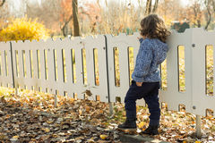 Back of toddler boy by fence Royalty Free Stock Images