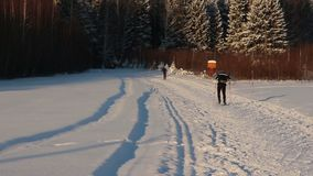 Back of two skiers in sportswear riding on track stock video footage