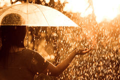 Back veiw of woman with umbrella in the rain and sunlight stock image