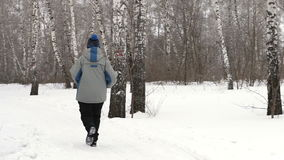 Back view of adult woman is running through the forest stock footage