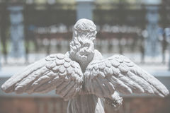 Back view of Angel statue Stock Image