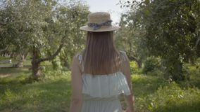 Back view of attractive young woman in straw hat and long white dress walking through the green summer garden. Carefree. Rural life, connection with nature stock footage