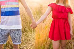 Back view of beautiful love couple holding hands outdoors over a summer field background. Close-up royalty free stock image