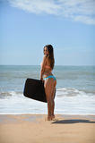 Back view of beautiful young woman holding surfboard in her hand on a beach at sunset or sunrise background Royalty Free Stock Image