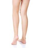 Back view of beautiful slim female legs Stock Photos
