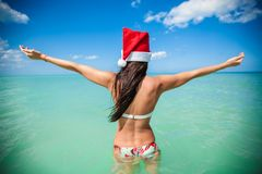 Back view of beautiful young woman in santa hat Stock Photography
