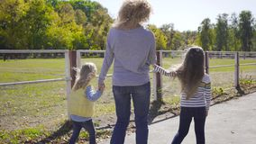 Back view of blond caucasian woman walking with her daughters along the corral for horses. Beautiful brown horse eating. Grass on the background. Happy family stock video