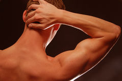 Back view of a Bodybuilder. Back view of a young man with flexing muscles stock photos