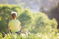 Kid at easter. Back view of boy after easter egg hunt in the park with basket full of eggs, spring concept Stock Photography