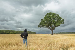 Back view of boy wearing black hooded sweatshirt and blue jeans looking at stunning summer landscape with storm clouds and huge oa Stock Image