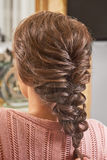 Back view of braided hairdo. Royalty Free Stock Photography