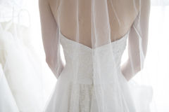 Back view of bride wearing a veil Royalty Free Stock Images