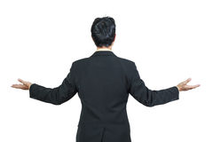 Back view of businessman Royalty Free Stock Image