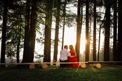 The back view of the charming happy couple looking at each other while sitting on the bench in the forest during the royalty free stock photos