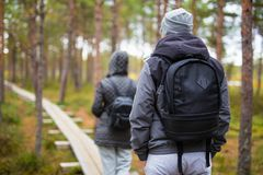 Back view of couple with backpacks hiking in forest Royalty Free Stock Photography