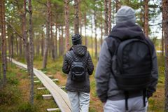 Back view of couple with backpacks walking in forest Royalty Free Stock Photos