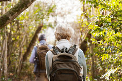 Back view couple hiking. Back view of couple hiking together in forest stock photography
