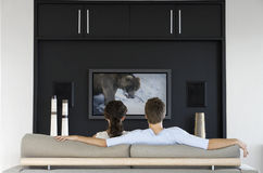 Back view of couple watching wildlife movie on television in living room Royalty Free Stock Photo