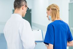 Back view of doctor in white coat and female surgeon discussing diagnosis. In hospital royalty free stock photography